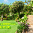 It's greener here concept with painted grass — Foto de Stock