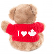 Stock Photo: I love CanadTeddy bear isolated on white background. Back vie