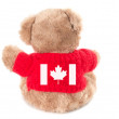 Canadian Teddy bear isolated on white background. Back view — Stock Photo