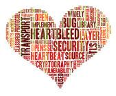 Heartbleed concept with tag cloud forming the heart shape with b — Stockfoto