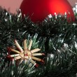 Christmas decoration — Stock Photo #35583919