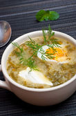 Green borscht — Stock Photo