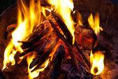 Bonfire closeup — Stock fotografie