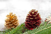Christmas spruce branches and cones — Stock Photo