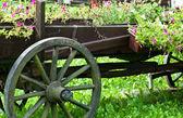 老式马车 — 图库照片