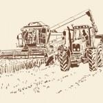 Harvest — Stock Vector #49682173
