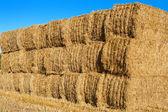 Pila di balle di fieno in un campo, inghilterra. — Foto Stock