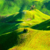 Green landscapes waves — Stock Photo