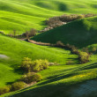 In the middle of the gorge Tuscany — Stock Photo