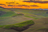 Spring Tuscan fields bathed in warm sunlight — Foto Stock