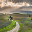 Road to Tuscan farmhouse, Italy — Stock Photo