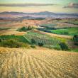 Beautiful colorful fields in the spring of Tuscany — Stock Photo
