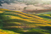 Rural field with a rising sun in Tuscany, Italy — Stock Photo