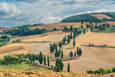 Curled road overgrown cypress trees in Tuscany, Italy — Stock Photo