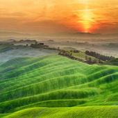 Tuscan green spring at sunset, Italy — Stock Photo