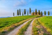 классический образ тоскана вокруг пиенца, италия — Стоковое фото
