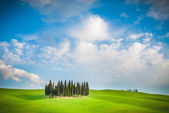 A lovely colors of the Tuscan spring. — Stock Photo