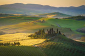 Tuscan house on the misty hills — Foto Stock