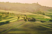 Spring field around Pienza, on the road between Siena and Rome — Stock Photo