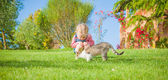 Little girl plays with a cat on a green blade of grass — Stock Photo