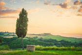 Tuscan landscape of cypress and a well — Stock Photo
