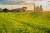 Tuscan landscape with a chapel at sunset — Stock Photo