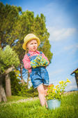 Little helper on the green the grass on a summer day — Stock Photo