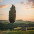 Tuscan landscape of cypress and a well — Stock Photo #47828613