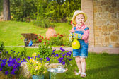 Little helper on the green the grass on a summer day — Stockfoto