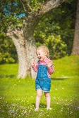 Little gardiner on the green grass in a summer day — Stock Photo