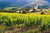 Abbey Sant'Antimo between the vineyards in Tuscany, Italy — Stock Photo