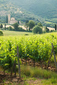 Old monastery Sant'Antimo among the vineyards in Tuscany, Italy — Stock Photo