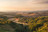Tuscan landscape in warm calm day, Italy — Stock Photo
