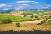 Summer Tuscan landscape, green field and blue sky — Stock Photo