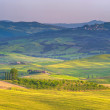 Tuscan spring in fields on the landscape — Stock Photo #50364601