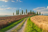 Classic Tuscan views around Pienza, Italy — Stock Photo