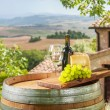 Grapes with cheese and wine in a beautiful landscape, Italy — Stock Photo #51022877