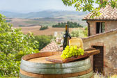 Grapes with cheese and wine in a beautiful landscape, Italy — Stockfoto
