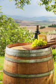 Grapes with cheese and wine in a beautiful landscape, Italy — Zdjęcie stockowe