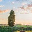 Tuscan well in the landscape of the Val d'Orci, Tuscany — Stock Photo #51158977