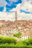 Blick auf siena, italien — Stockfoto