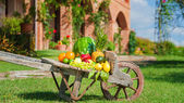 Juicy and colorful fresh fruit arranged on a wooden wheelbarrow  — Stock Photo