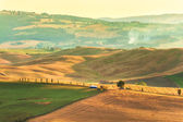 The hot light painting Val d'Orcia in Tuscany — Stock Photo
