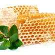 Honey honeycombs with mint — Stock Photo