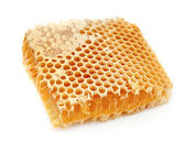 Golden honeycombs — Stock Photo