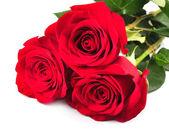 Bukiet czerwonych róż — Zdjęcie stockowe