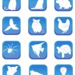 Stock Vector: Pet icons