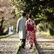 Traditional Japanese Couple — Stock Photo #27956503