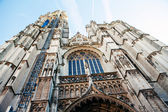 Antwerpen Holy Mother Cathedral — Stockfoto
