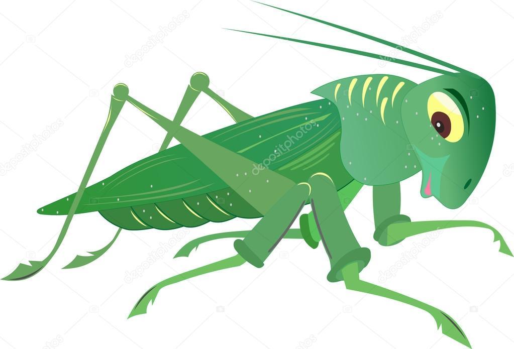 昆虫蚂蚱 — 图库矢量图片#51213895